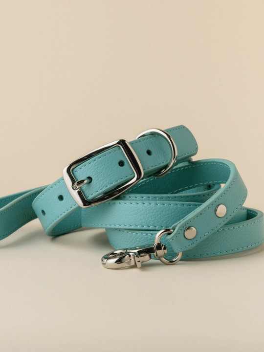 Dog Collars Australia Online