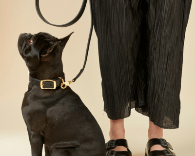 DESIGNER LEATHER DOG LEAD Black