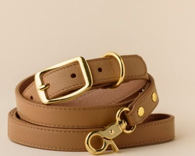 DESIGNER LEATHER DOG SET Indian Tan