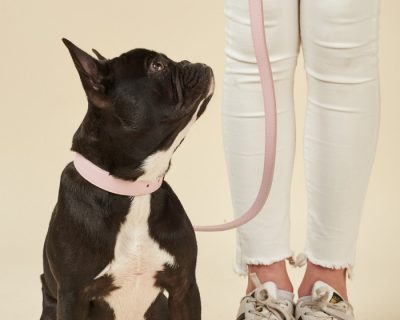 DESIGNER LEATHER DOG LEAD Rose Quartz